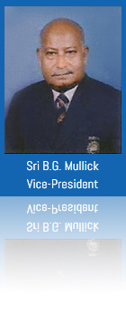 bg mulick